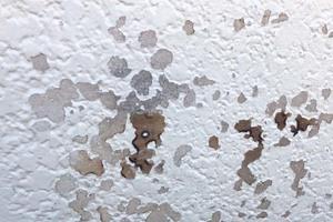 外壁塗装 笠間市 モルタル壁塗装(施工前)
